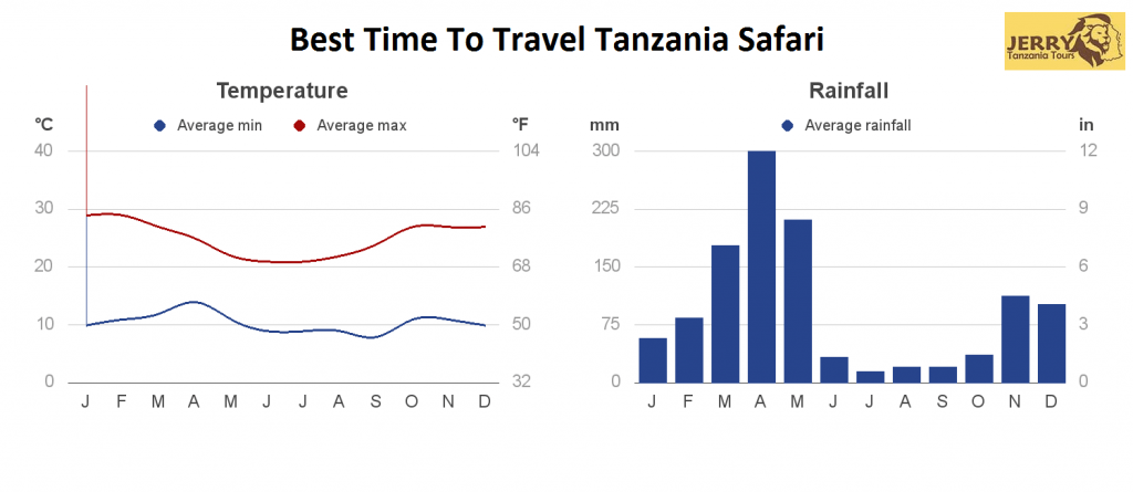 Best Time to Go Tanzania Safari