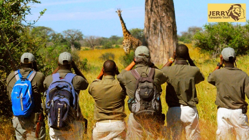 walking Safari